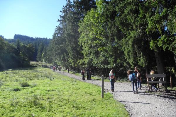 Hörnle Wanderweg