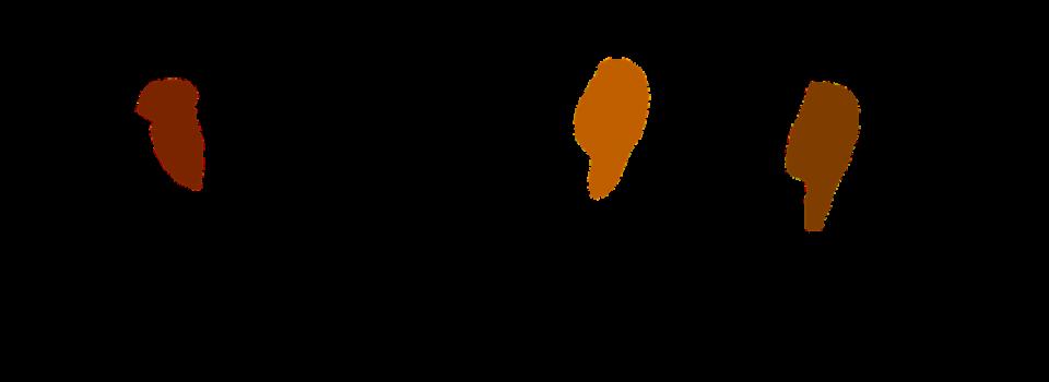 Foto: Nemo / pixabay.com